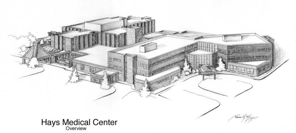 1 Hays Medical Drawing - ORGINAL 1000